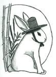 erss-rabbit-in-gat-logo